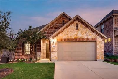 Fort Worth Single Family Home For Sale: 3012 Waterfall Drive