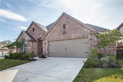 Collin County Single Family Home For Sale: 1901 Eagle Aerie Lane