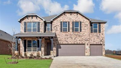 Tarrant County Single Family Home For Sale: 2823 Long Slope