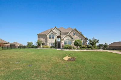 Denton County Single Family Home For Sale: 178 Las Colinas Trail