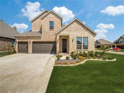 Little Elm Single Family Home For Sale: 1600 Silla Drive