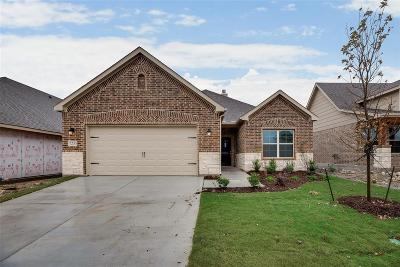 Fort Worth Single Family Home For Sale: 7233 Tesoro Trail