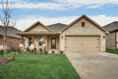 Fort Worth Single Family Home For Sale: 7213 Navoti Trail