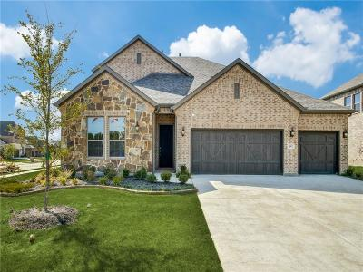 Denton County Single Family Home For Sale: 1601 Canals Drive