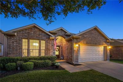 Little Elm Single Family Home For Sale: 1108 Lake Hollow Drive