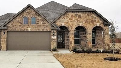 Denton County Single Family Home For Sale: 6204 Looms Court