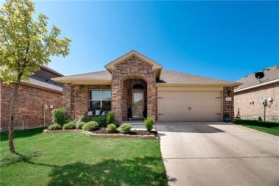 Parker County Single Family Home For Sale: 605 River Rock Drive