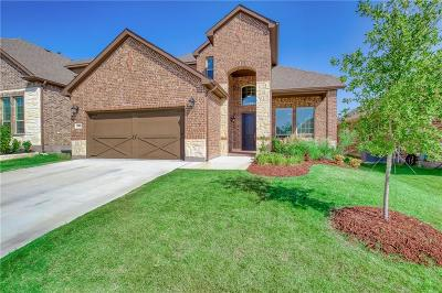 Parker County Single Family Home For Sale: 14804 Brettridge Drive