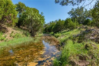 Mills County Farm & Ranch For Sale: 581 County Road 508