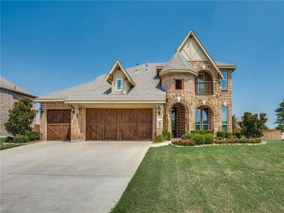 Denton County Single Family Home For Sale: 300 River Meadows Lane