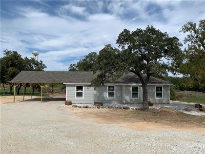 Palo Pinto County Single Family Home For Sale: 100 Turkey Creek Road