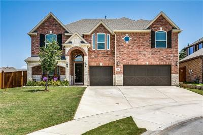 Fort Worth Single Family Home For Sale: 12508 Haverhill Drive