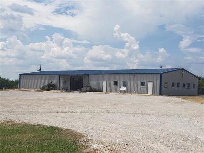 Parker County Commercial For Sale: 3577 N Fm 51 Highway N