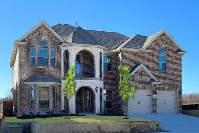 Dallas County, Denton County, Collin County, Cooke County, Grayson County, Jack County, Johnson County, Palo Pinto County, Parker County, Tarrant County, Wise County Single Family Home For Sale: 5205 Center Hill Drive