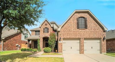 Fort Worth Single Family Home For Sale: 9804 McFarring Drive