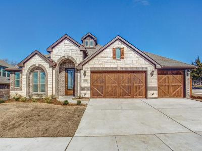 Dallas County, Denton County, Collin County, Cooke County, Grayson County, Jack County, Johnson County, Palo Pinto County, Parker County, Tarrant County, Wise County Single Family Home For Sale: 1107 Nighthawk Drive
