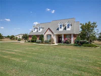 Parker County Single Family Home For Sale: 112 Sams Lane