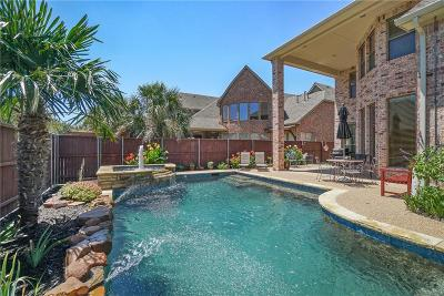 Allen Single Family Home For Sale: 1406 Luckenbach Drive