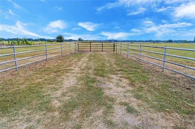 Angus, Barry, Blooming Grove, Chatfield, Corsicana, Dawson, Emhouse, Eureka, Frost, Hubbard, Kerens, Mildred, Navarro, No City, Powell, Purdon, Rice, Richland, Streetman, Wortham Farm & Ranch For Sale: Tbd SW County Road 2190