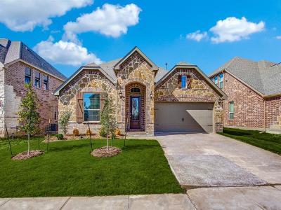 Lewisville Single Family Home For Sale: 356 Long Meadow Way