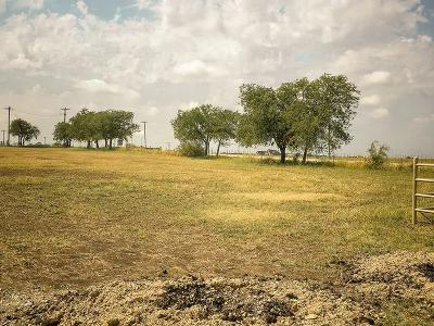 Parker County Residential Lots & Land For Sale: 100 Bittersweet Trail