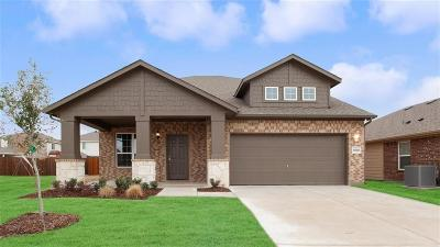 Forney Single Family Home For Sale: 1010 Alexa Drive