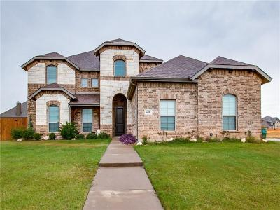 Midlothian Single Family Home For Sale: 641 Dove Creek Park
