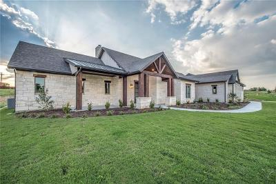 Parker County Single Family Home For Sale: 1013 Aledo Ridge Court