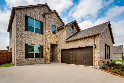Mckinney Single Family Home For Sale: 7809 Heritage Palms Trail
