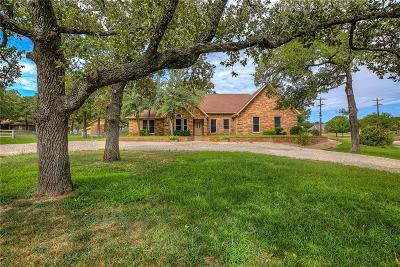 Parker County Single Family Home For Sale: 100 Woody Creek Drive