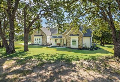 Parker County Single Family Home For Sale: 437 Sandpiper Drive