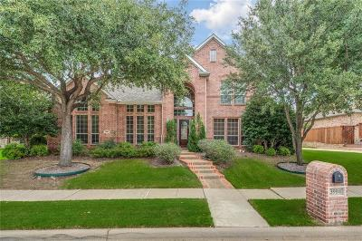 Flower Mound Single Family Home For Sale: 3904 Edna Valley Court
