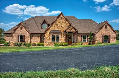 Parker County Single Family Home For Sale: 164 Tres Vistas Court