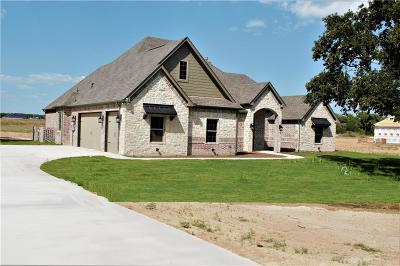 Parker County Single Family Home For Sale: 1109 Friendship Road