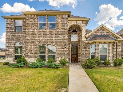 Grand Prairie Single Family Home For Sale: 2819 Sendero