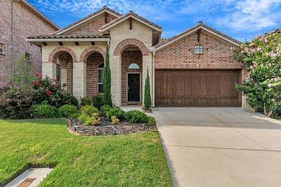Irving Single Family Home For Sale: 307 Palacio Street
