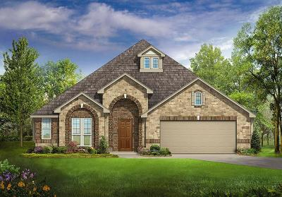 Little Elm Single Family Home For Sale: 1309 Bunting Drive