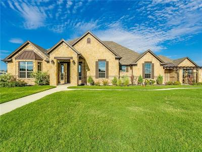 Parker County Single Family Home For Sale: 170 Palomino Court
