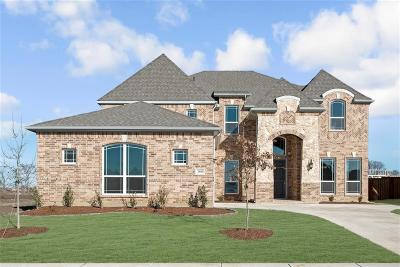Celina Single Family Home For Sale: 2801 Spring Creek Trail