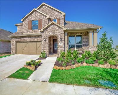 Little Elm Single Family Home For Sale: 7012 Spring Park Drive