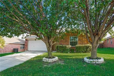 Denton TX Single Family Home For Sale: $228,000
