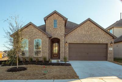 Celina Single Family Home For Sale: 1617 Snowdrop Drive
