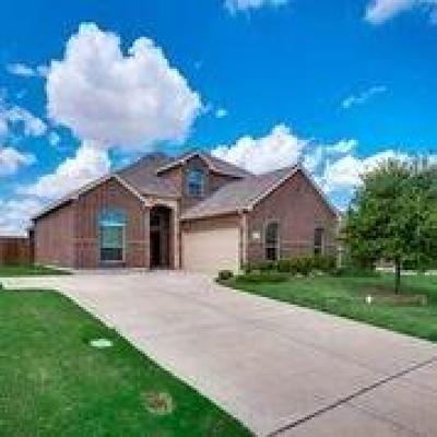 Desoto Single Family Home For Sale: 1005 Rio Vista Drive