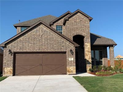 Parker County Single Family Home For Sale: 241 Palmerston Drive