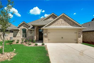Parker County Single Family Home For Sale: 1433 Town Creek Circle