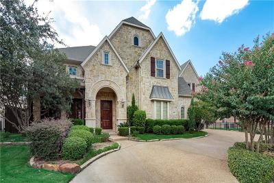 Plano Single Family Home For Sale: 3009 Vermillion Drive