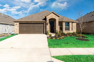 Forney Single Family Home For Sale: 2303 Templin Avenue