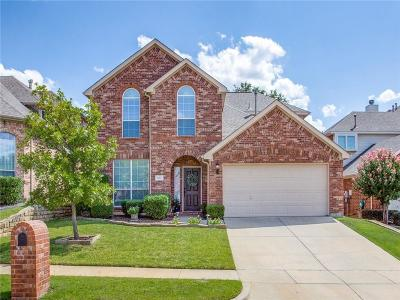 Flower Mound Single Family Home For Sale: 4117 Amador Court