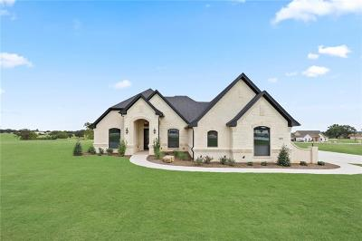 Parker County Single Family Home For Sale: 405 Christian Way