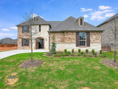 Mckinney Single Family Home For Sale: 2013 Binns Drive
